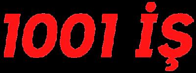 1001 İş Podcast Burak Seyman